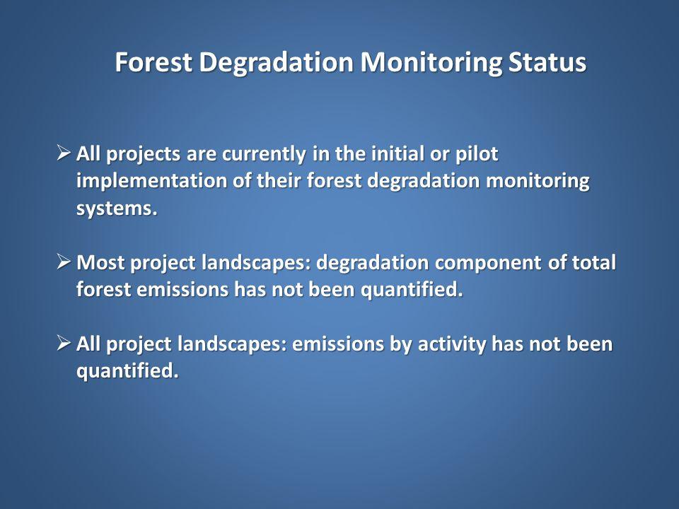 Forest Degradation Monitoring Status