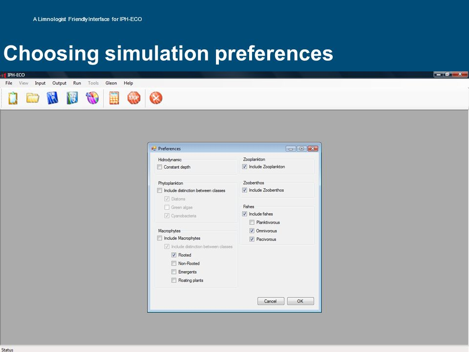 Choosing simulation preferences