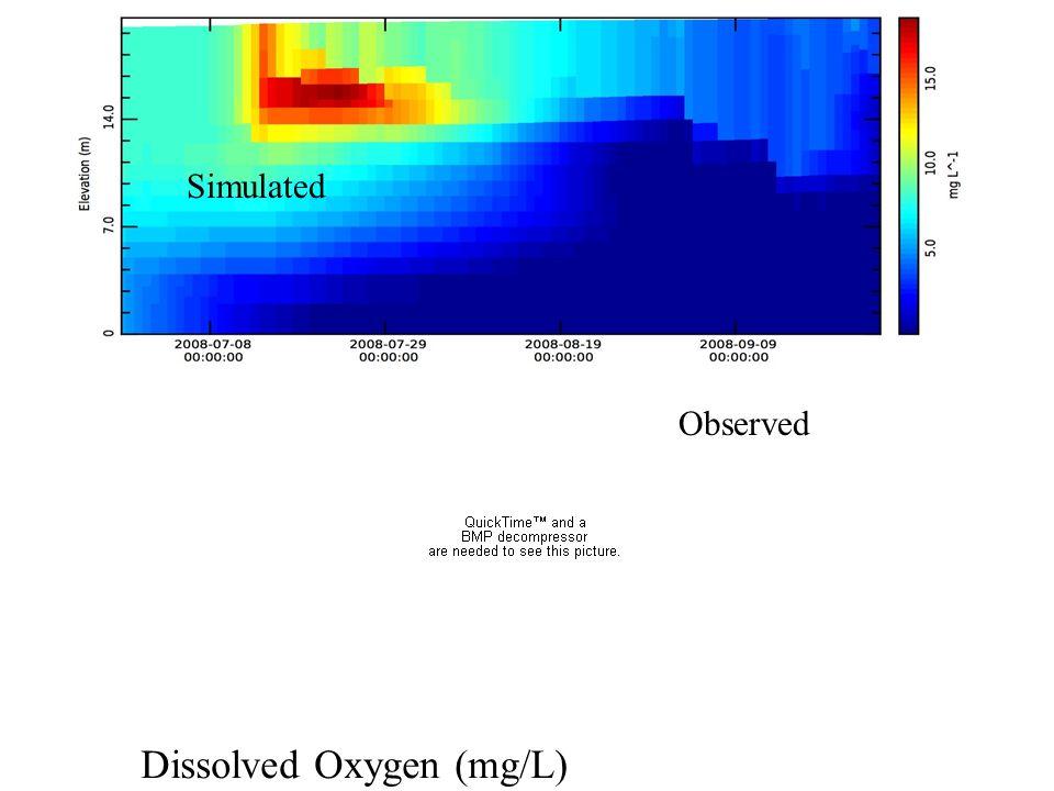 Dissolved Oxygen (mg/L)