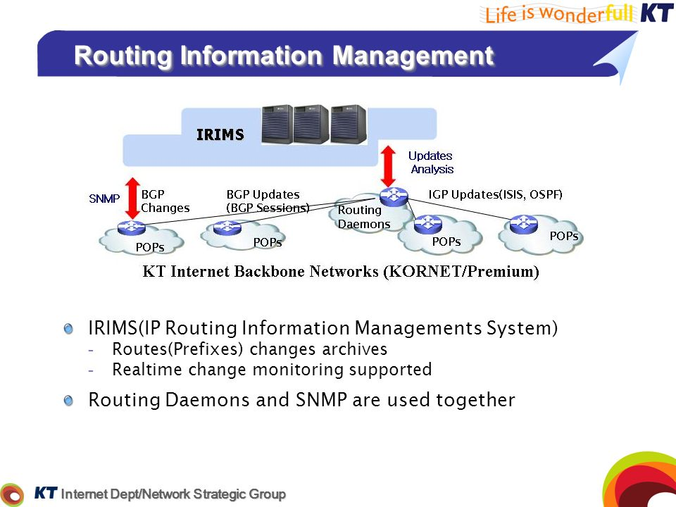 Routing Information Management