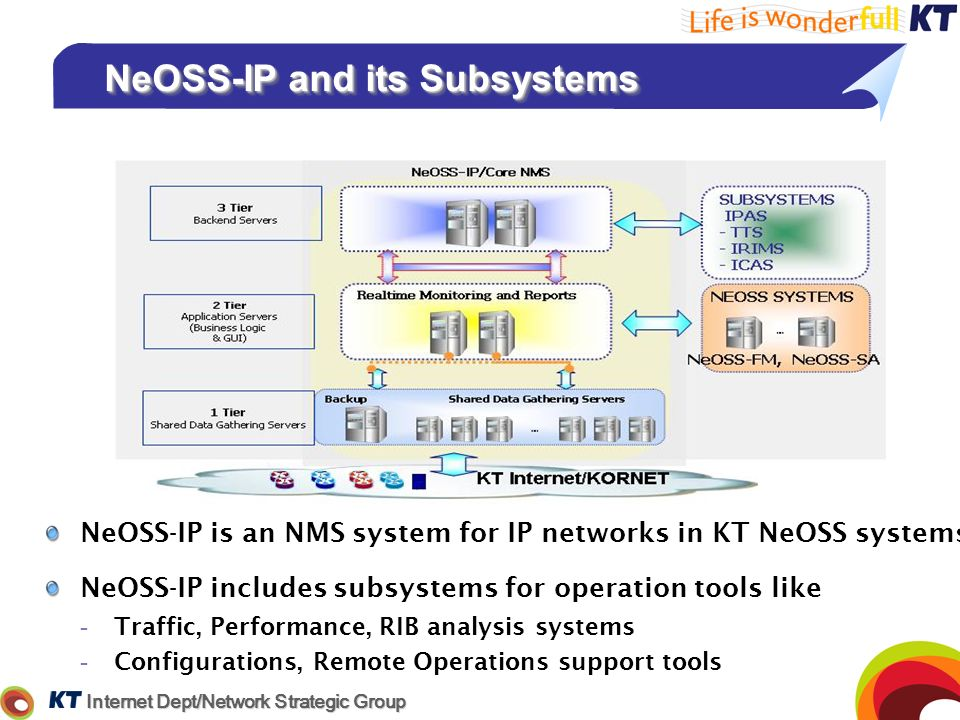 NeOSS-IP and its Subsystems