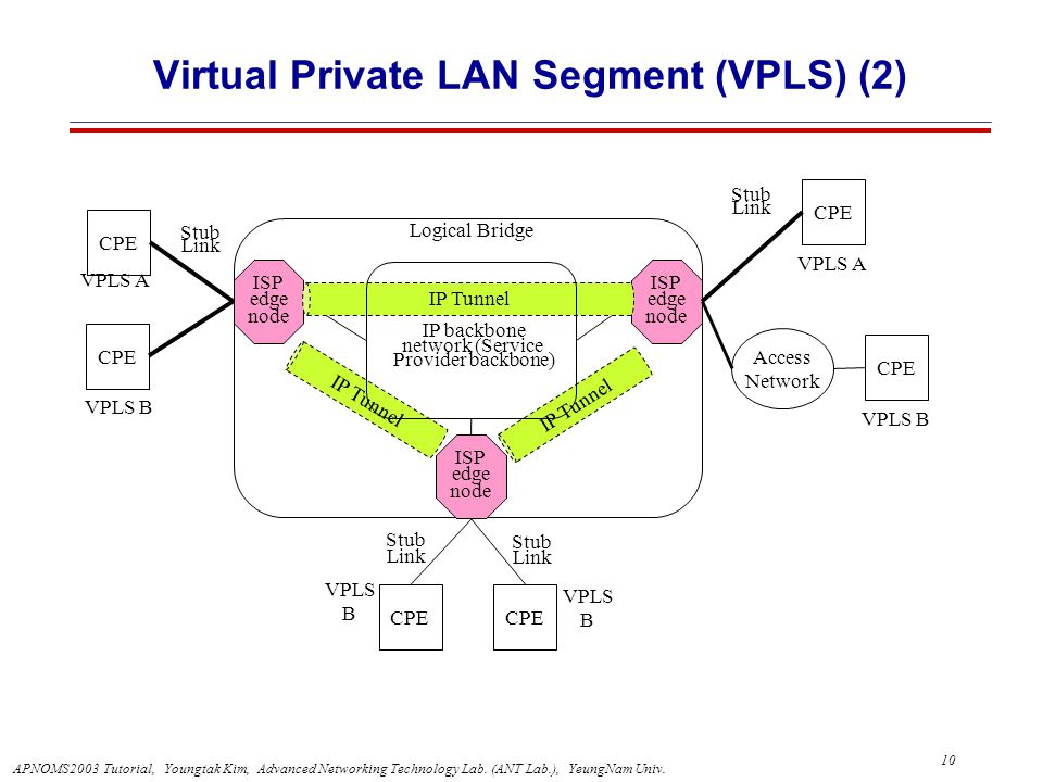 Virtual Private LAN Segment (VPLS) (2)