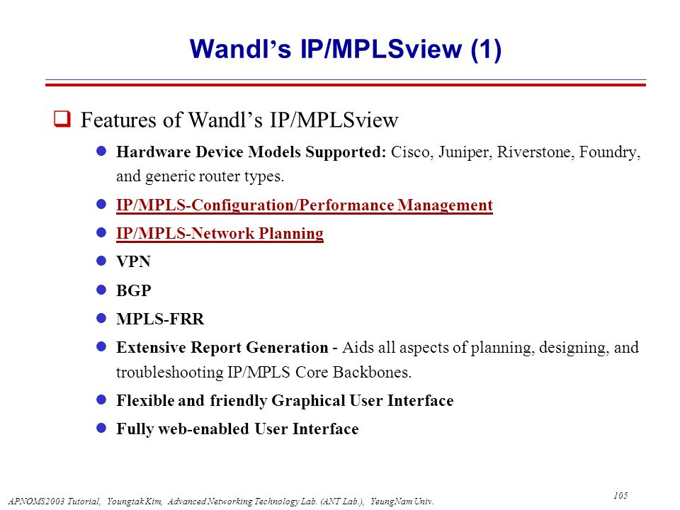 Wandl's IP/MPLSview (1)