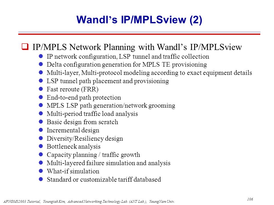 Wandl's IP/MPLSview (2)