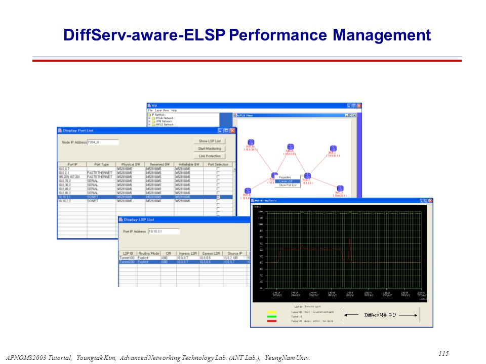 DiffServ-aware-ELSP Performance Management