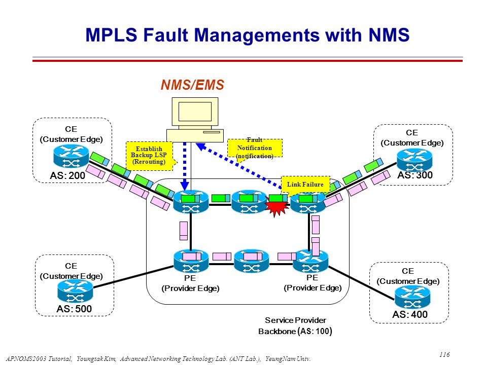 MPLS Fault Managements with NMS