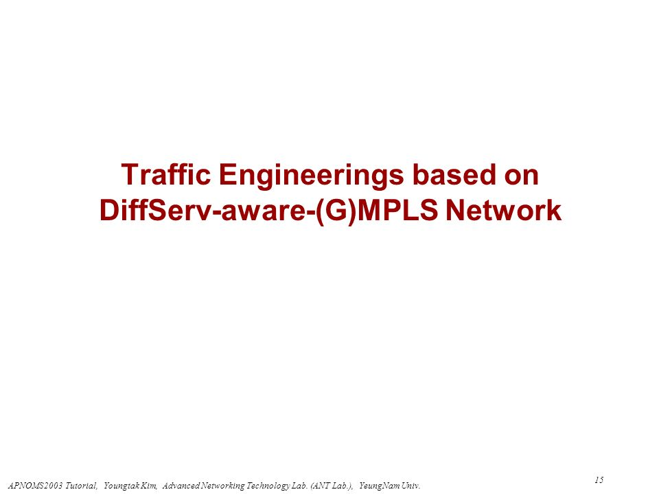 Traffic Engineerings based on DiffServ-aware-(G)MPLS Network