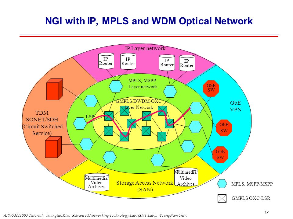 NGI with IP, MPLS and WDM Optical Network