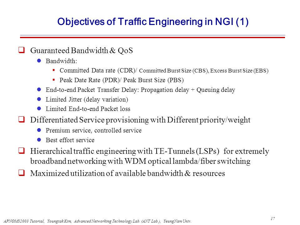 Objectives of Traffic Engineering in NGI (1)