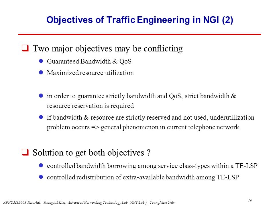 Objectives of Traffic Engineering in NGI (2)