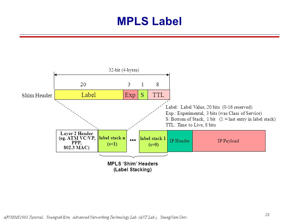 MPLS Label ••• Label Exp S TTL 20 3 1 8 Shim Header