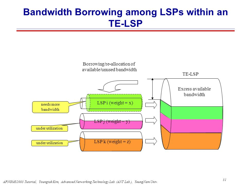 Bandwidth Borrowing among LSPs within an TE-LSP