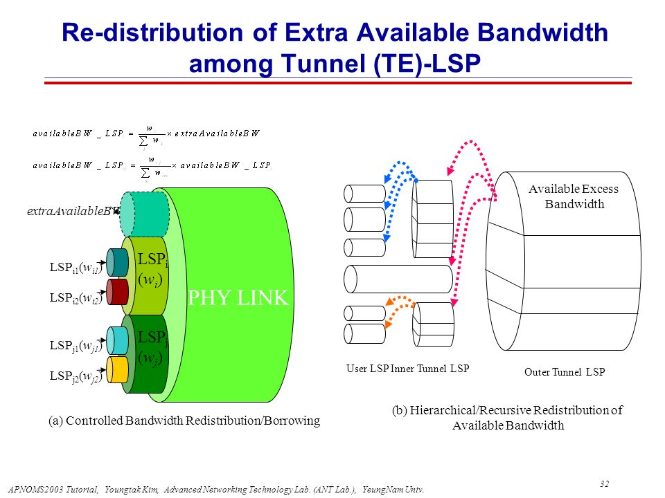 Re-distribution of Extra Available Bandwidth among Tunnel (TE)-LSP