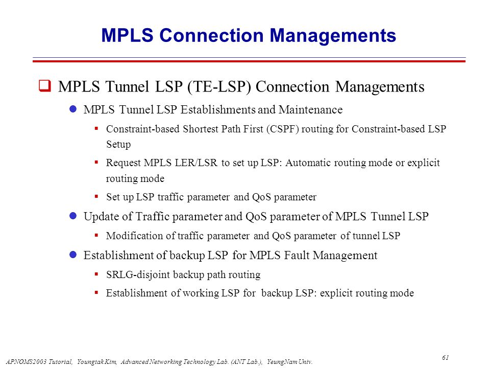 MPLS Connection Managements