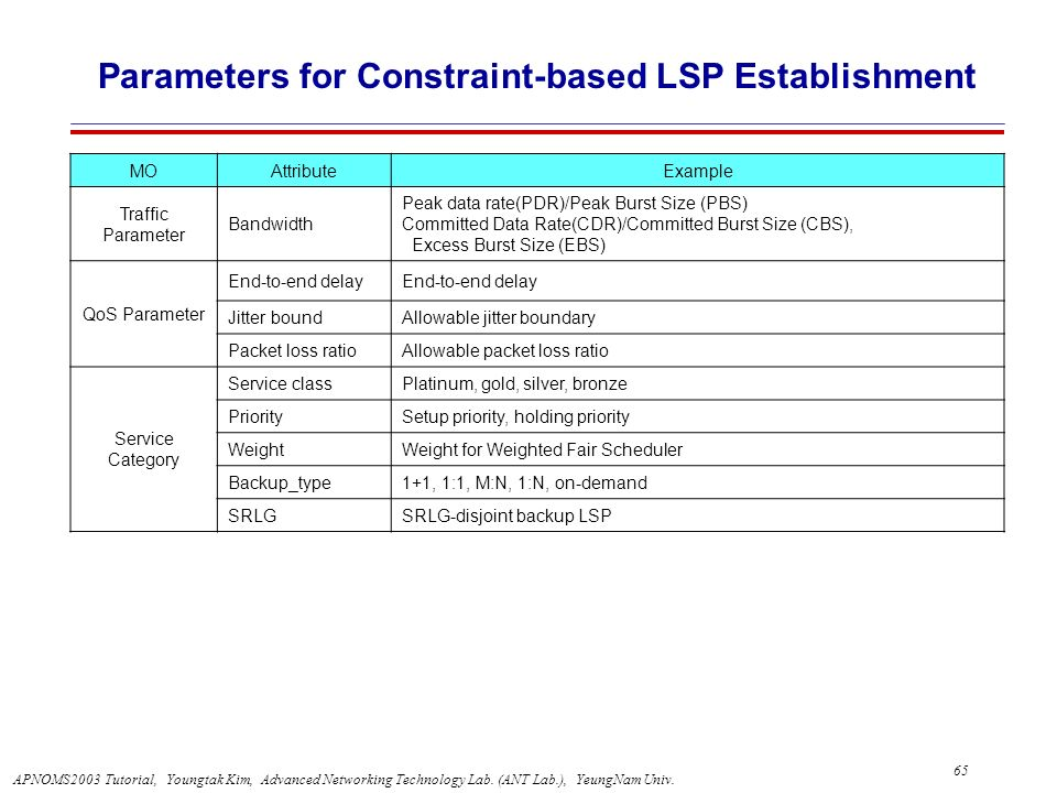 Parameters for Constraint-based LSP Establishment