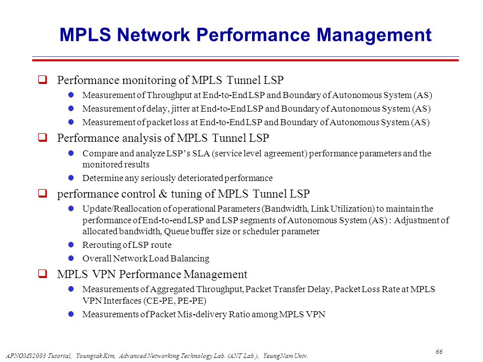 MPLS Network Performance Management