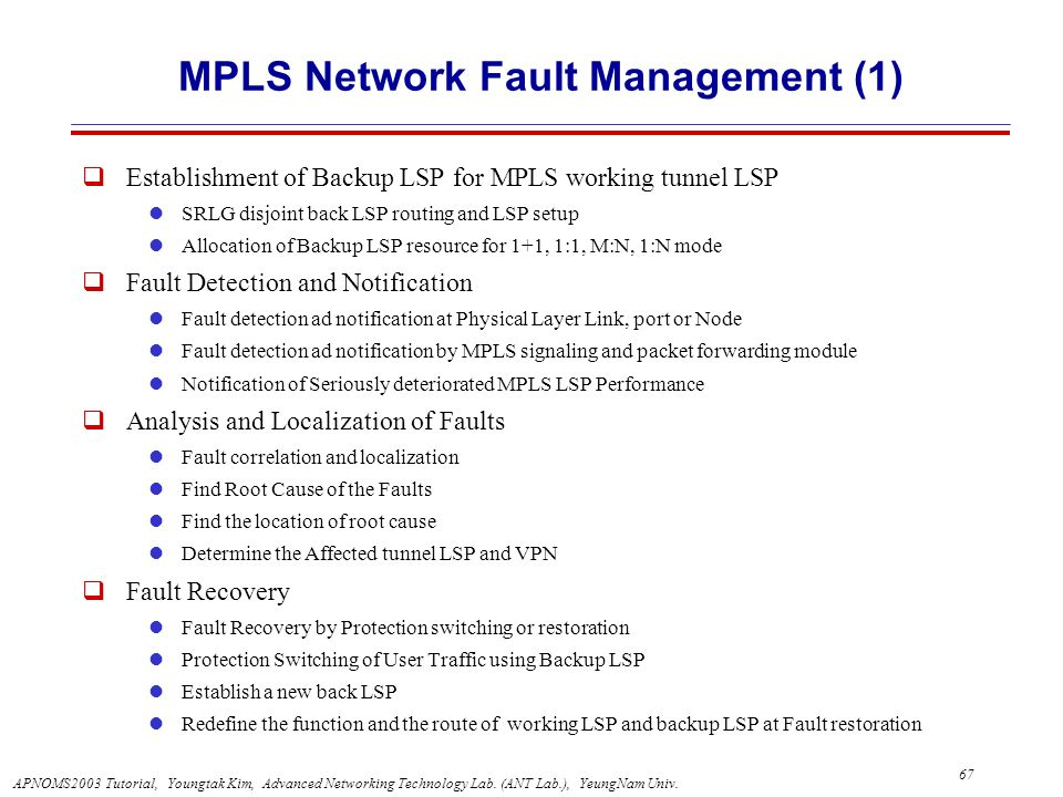 MPLS Network Fault Management (1)