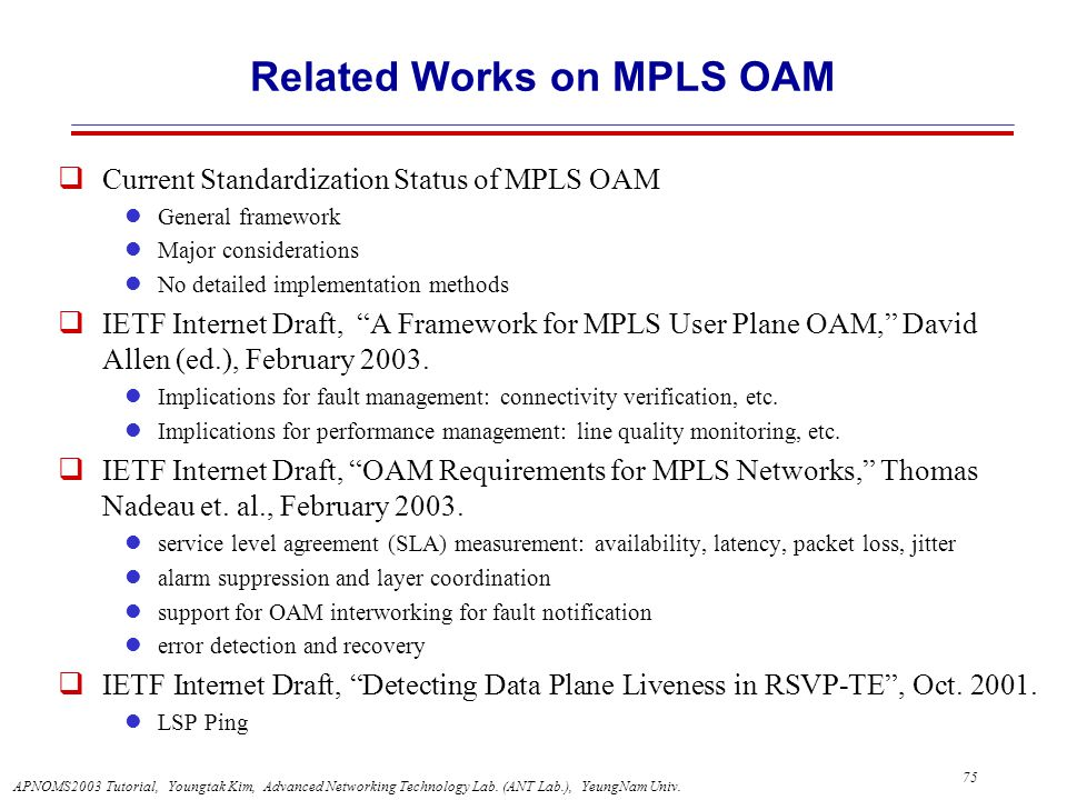 Related Works on MPLS OAM