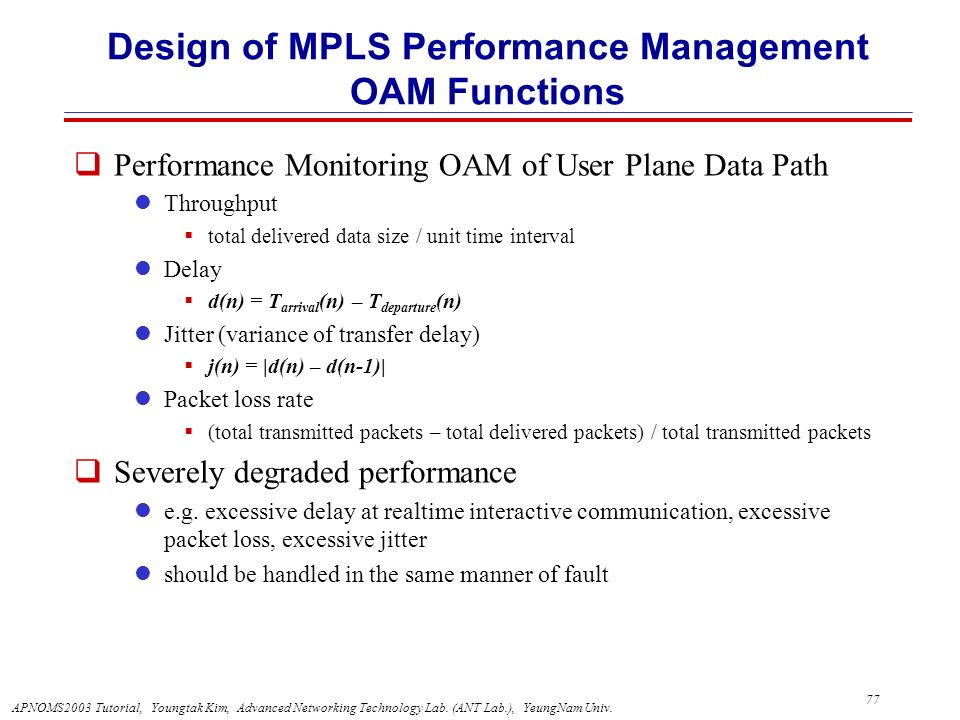 Design of MPLS Performance Management OAM Functions