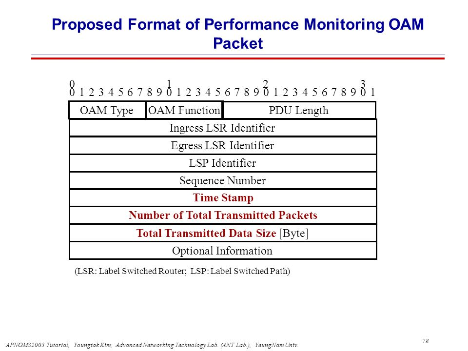 Proposed Format of Performance Monitoring OAM Packet