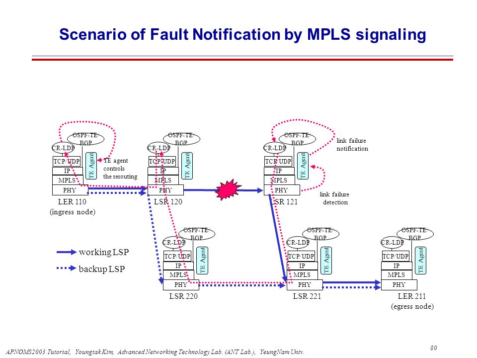 Scenario of Fault Notification by MPLS signaling