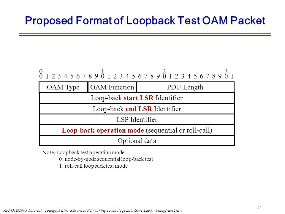 Proposed Format of Loopback Test OAM Packet