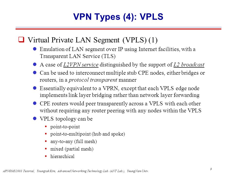 VPN Types (4): VPLS Virtual Private LAN Segment (VPLS) (1)