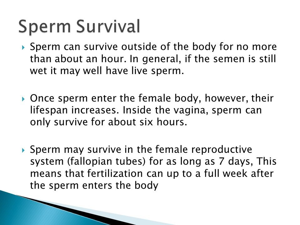 How long can sperm live outside body