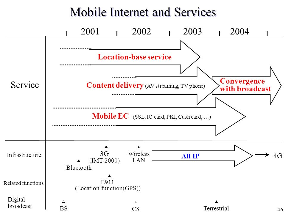 Mobile Internet and Services
