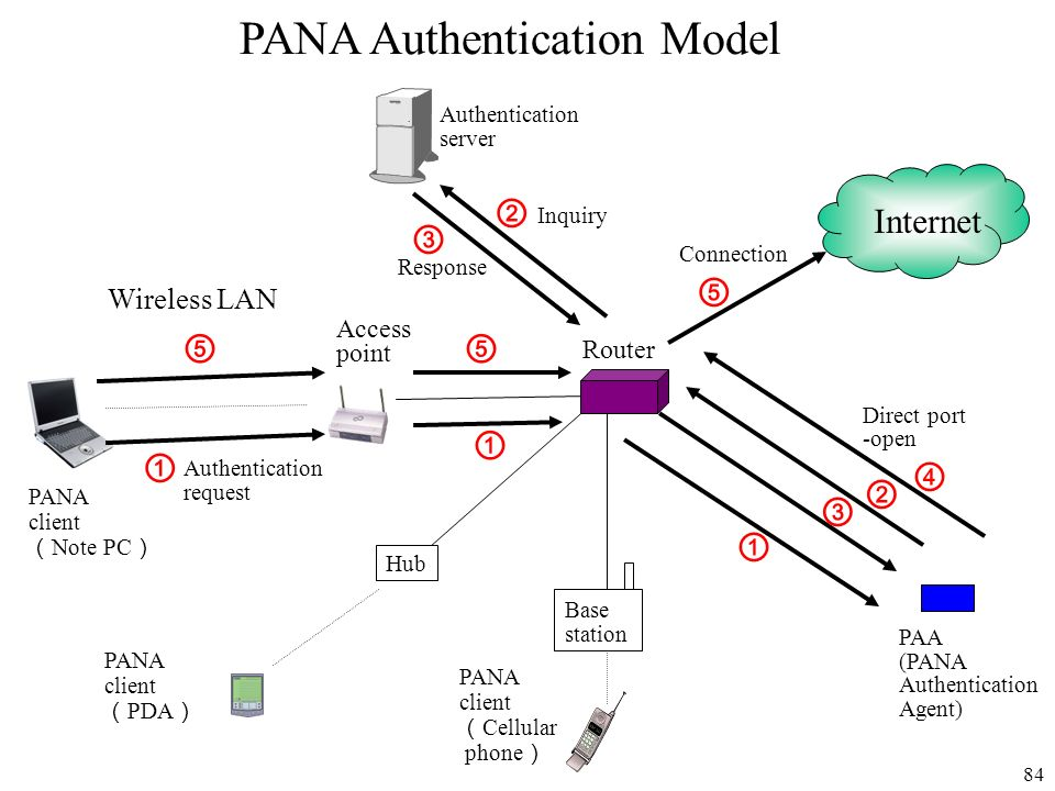 PANA Authentication Model