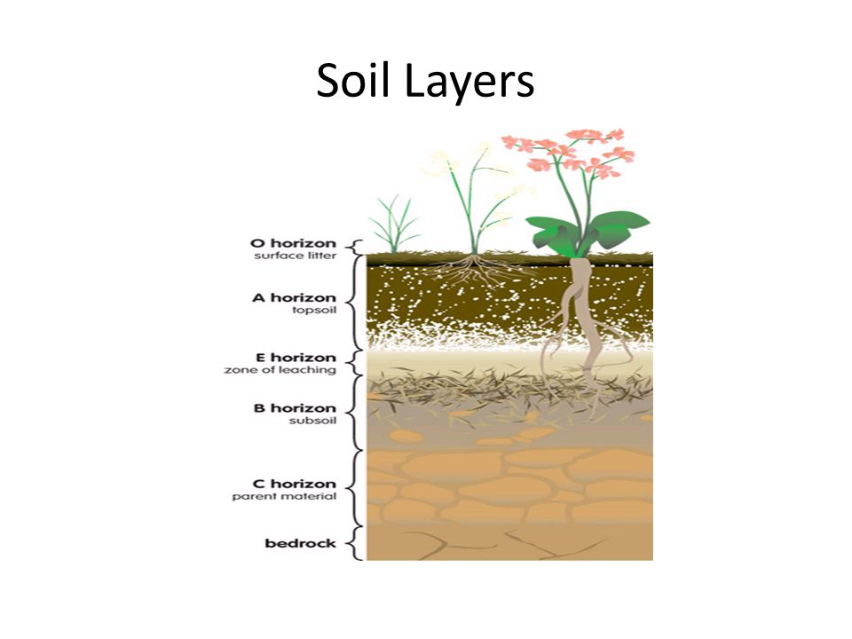 Soil analysis ppt video online download for 5 layers of soil