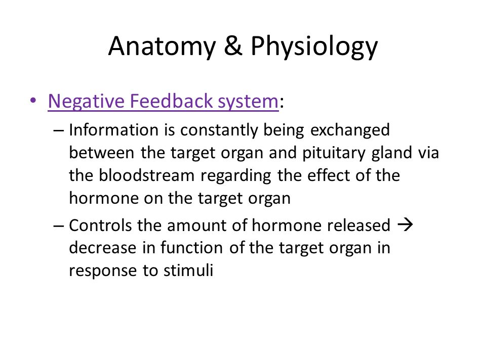Attractive What Is Negative Feedback In Anatomy And Physiology