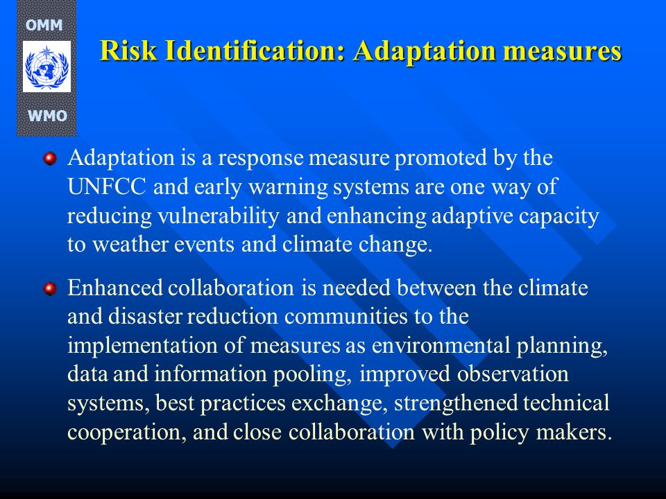Risk Identification: Adaptation measures
