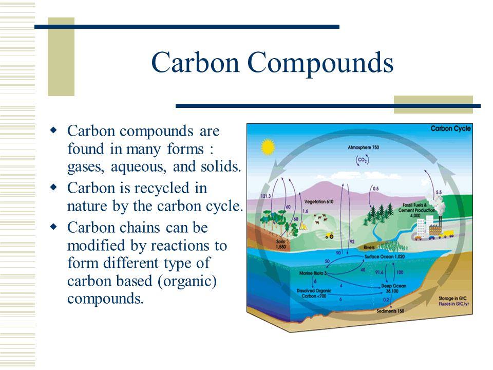 Carbon Compounds Carbon compounds are found in many forms : gases, aqueous, and solids. Carbon is recycled in nature by the carbon cycle.