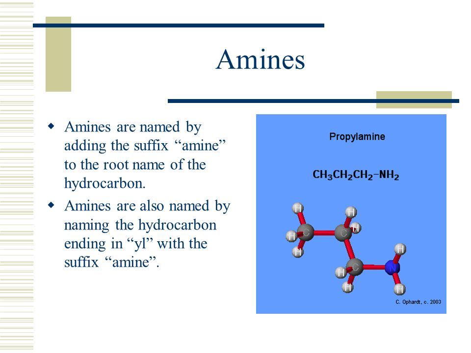 Amines Amines are named by adding the suffix amine to the root name of the hydrocarbon.