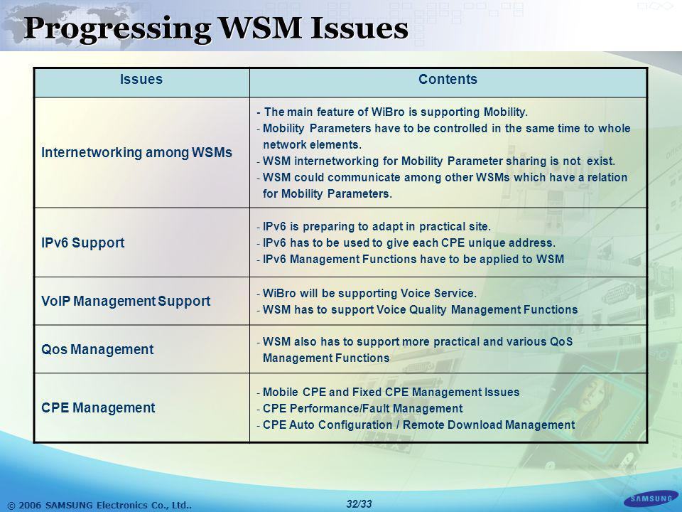 Progressing WSM Issues
