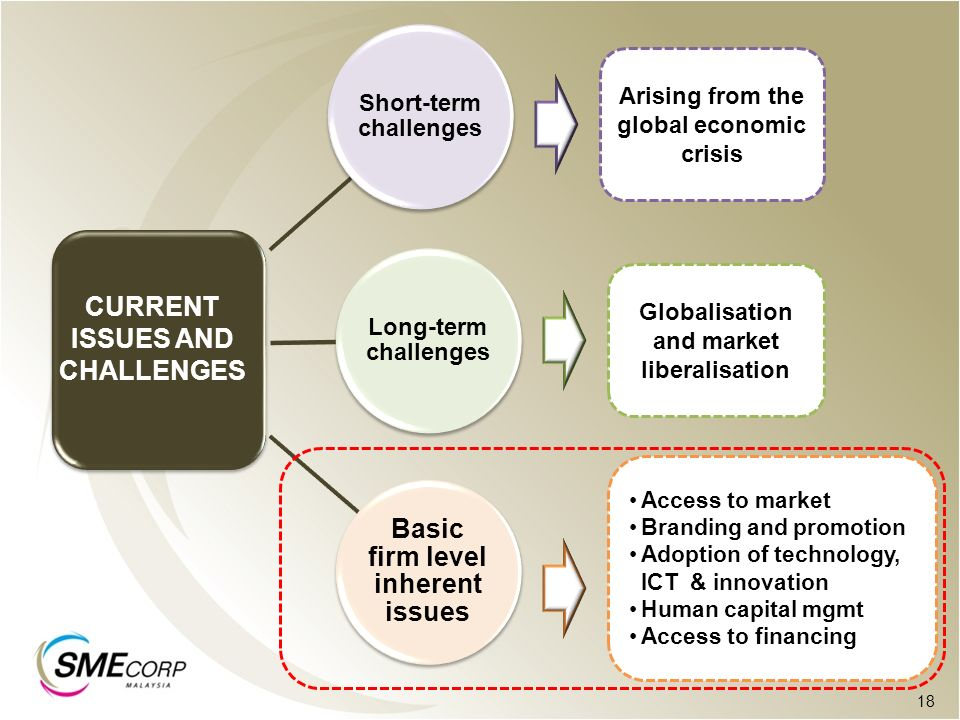 Short-term challenges Basic firm level inherent issues