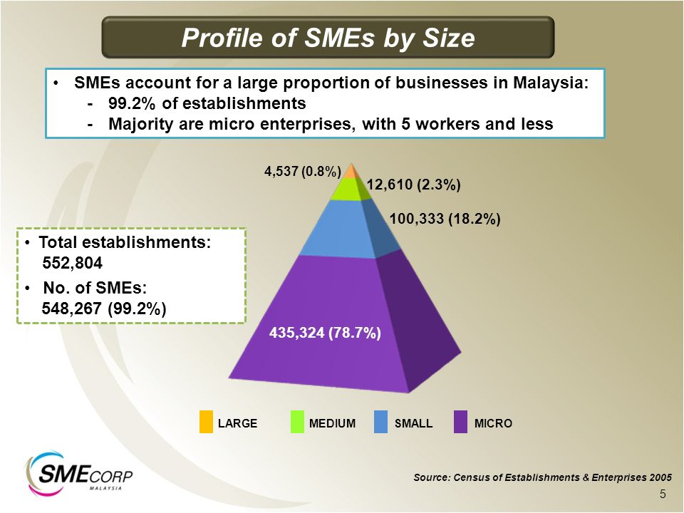 435,324 (78.7%) 100,333 (18.2%) 12,610 (2.3%) 4,537 (0.8%) Source: Census of Establishments & Enterprises