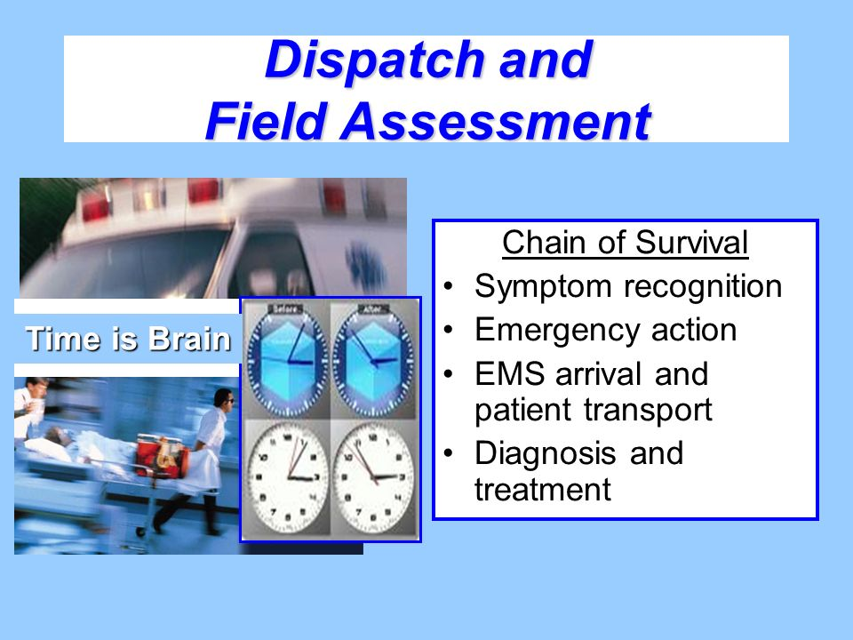 Dispatch and Field Assessment