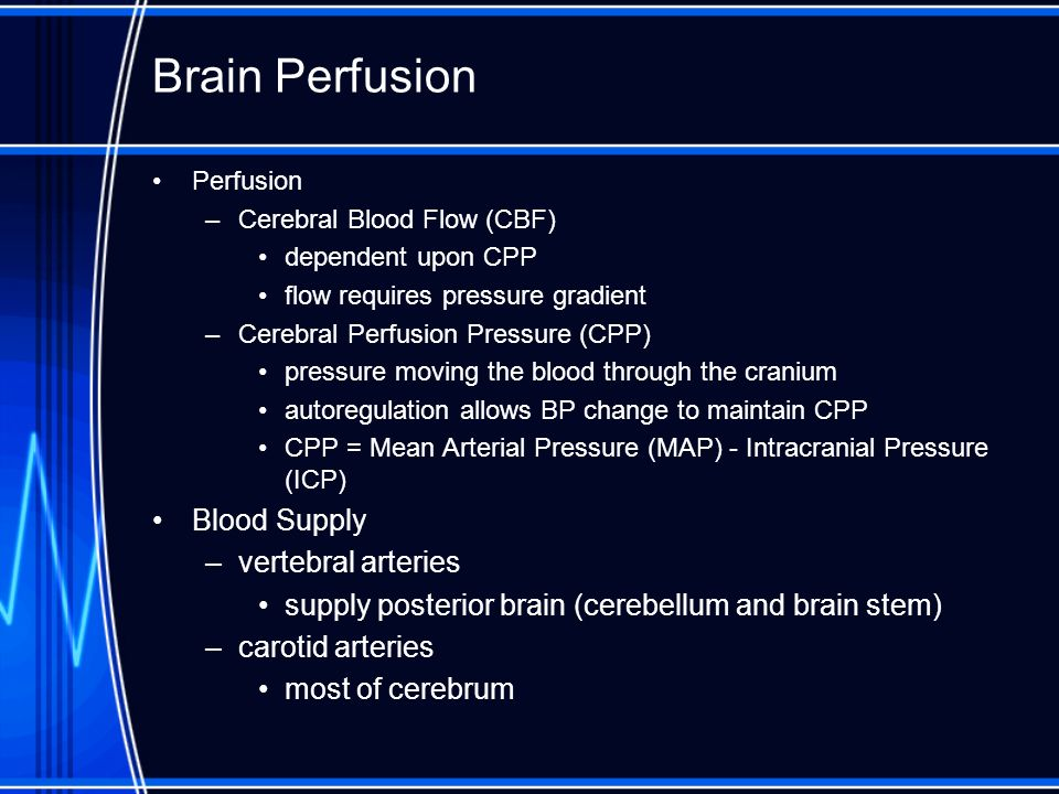 Brain Perfusion Blood Supply vertebral arteries