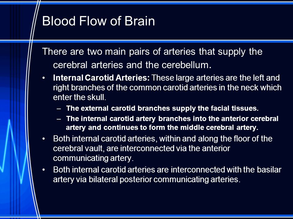 Blood Flow of Brain There are two main pairs of arteries that supply the cerebral arteries and the cerebellum.