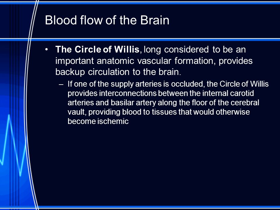 Blood flow of the Brain