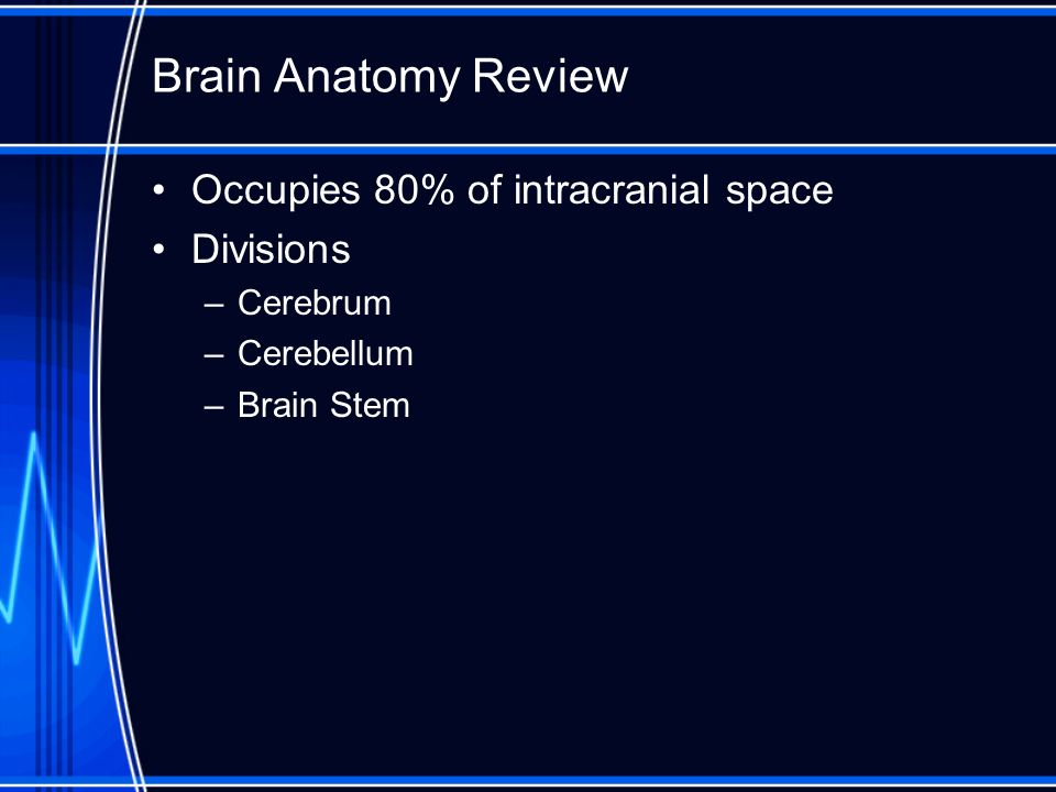 Brain Anatomy Review Occupies 80% of intracranial space Divisions