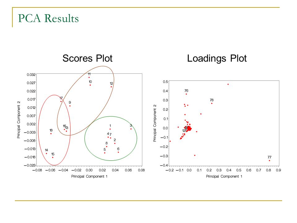 PCA Results Scores Plot Loadings Plot