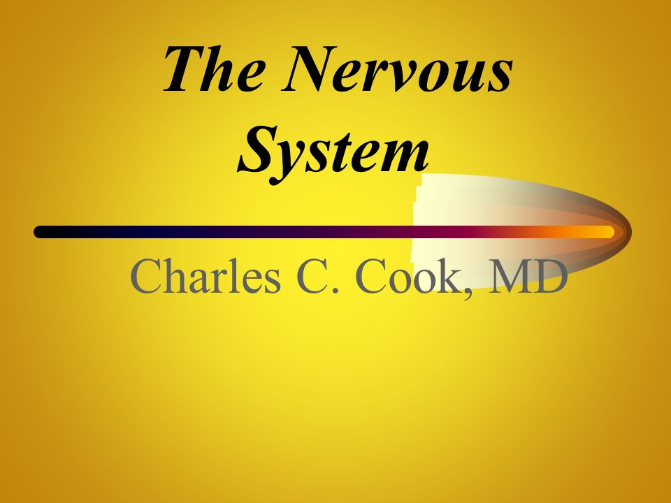 The Nervous System Charles C. Cook, MD