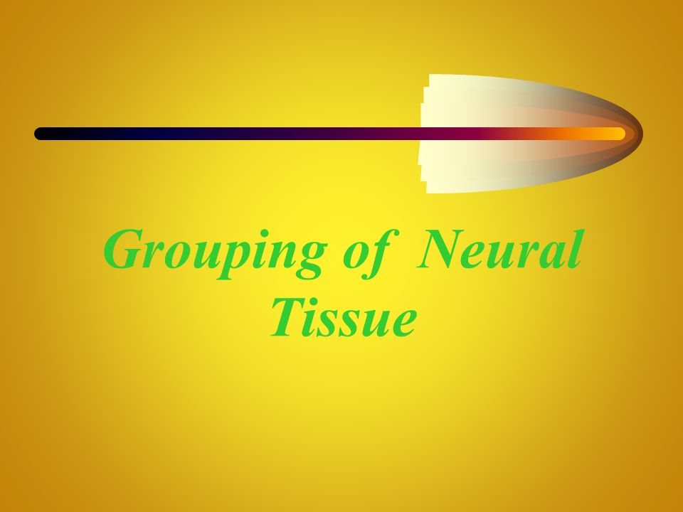 Grouping of Neural Tissue