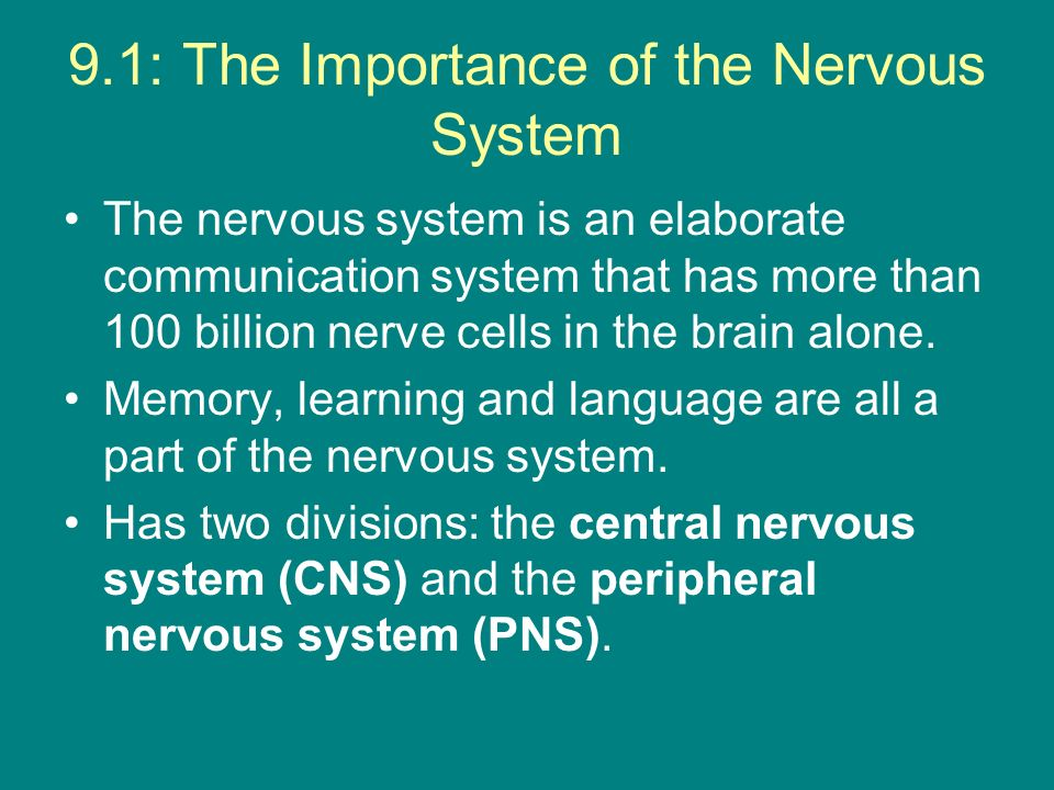 9.1: The Importance of the Nervous System