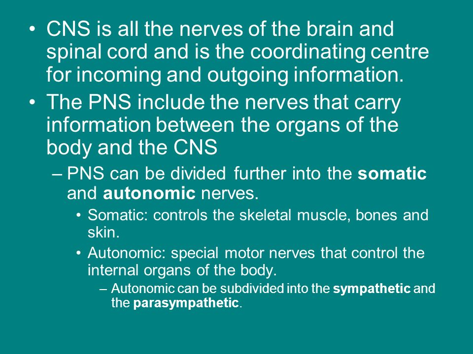CNS is all the nerves of the brain and spinal cord and is the coordinating centre for incoming and outgoing information.