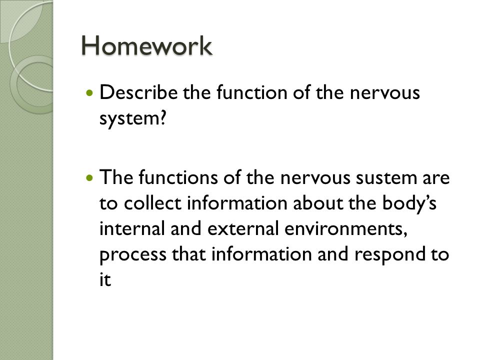 Homework Describe the function of the nervous system