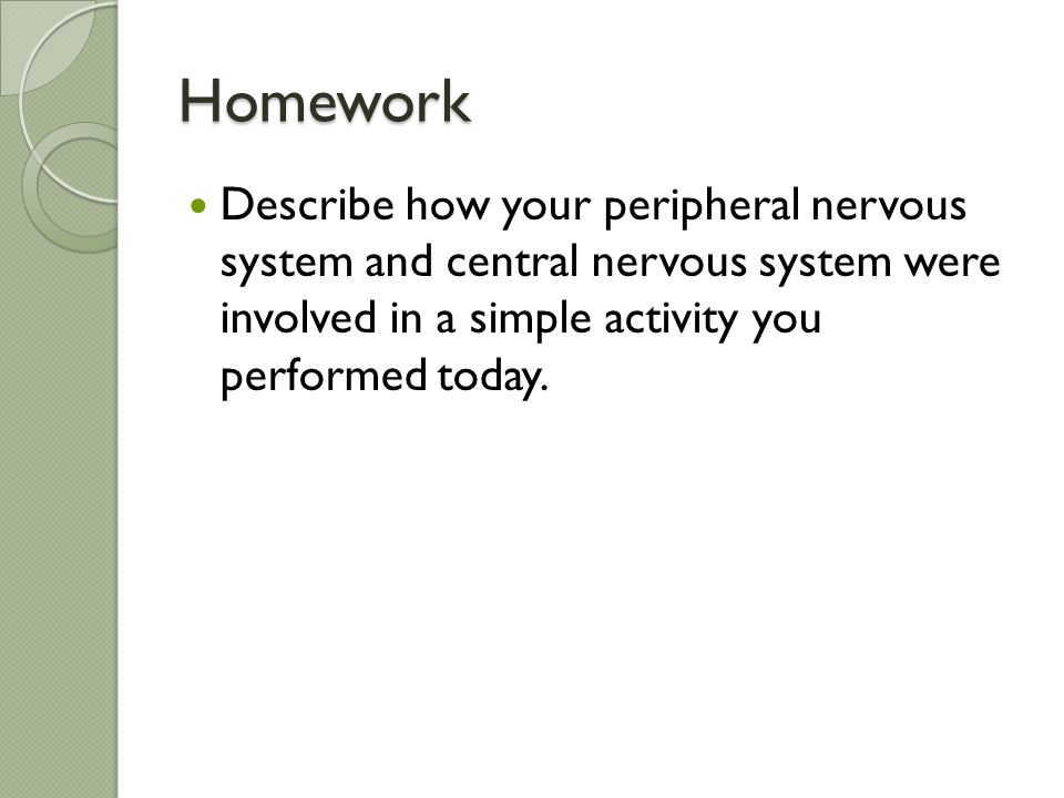 Homework Describe how your peripheral nervous system and central nervous system were involved in a simple activity you performed today.